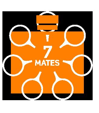 7-mates