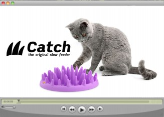 Catch_video_ikon