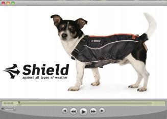 Shield_video_ikon